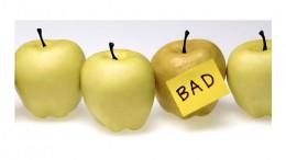 bad-apple-panoramic_11651787